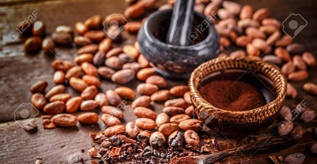 قیمت پودر کاکائو s9