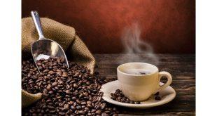 فروش عمده قهوه رست شده
