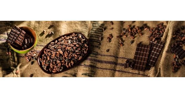 پخش پودر کاکائو اسپانیایی