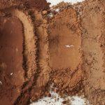 وارد کننده پودر کاکائو فله ای قلیایی کارگیل