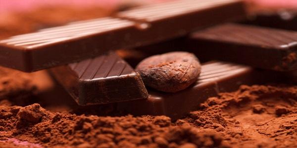 واردات پودر کاکائو فله ای تلخ هلندی مارک خوب